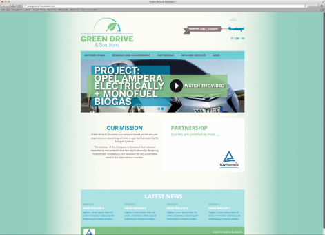Green Drive Solutions Website - Germany